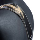 Ремень гитарный Richter GUITAR STRAP RAW II LIGHTNING BRONZE / GOLD / RS  #1594